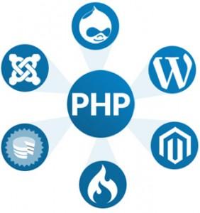 programavimas php drupal wordpress